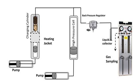 Fig. 1: Schematic of the BIOREP device used to run the reactive percolation experiments in the presence of an enriched, deep surface, microbial consortia. The reactor was filled with a sequence of basalt plugs (grey rectangles).